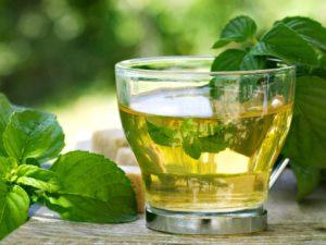 trà bạc hà cozy, cozy bạc hà, trà cozy bạc hà, trà cozy bán ở đâu, trà cozy bán ở đâu tp hcm, trà cozy có bao nhiêu vị, trà cozy các loại, trà cozy giá sỉ, trà cozy giá bao nhiêu, giá trà cozy, trà cozy giá rẻ, trà cozy túi lọc, trà cozy mua ở đâu, mua sỉ thùng trà cozy ở đâu, mua trà cozy ở thcm, mua trà túi lọc cozy ở đâu, thùng trà cozy, hộp trà cozy 50g